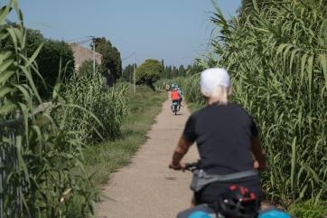 La voie verte peu avant Saint-Rémy